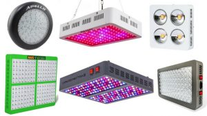 Best Led Grow Lights For Weed 2019 Reviews By Experts In