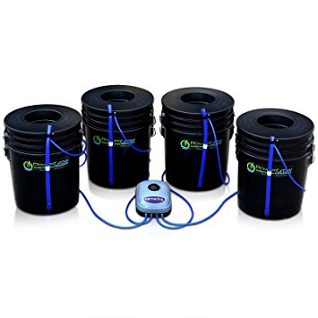 Deep Water Culture Hydroponic Bubbler 8 Bucket Kit