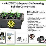 H2OtoGro 04063.75TF DWC Self Watering Hydroponic System
