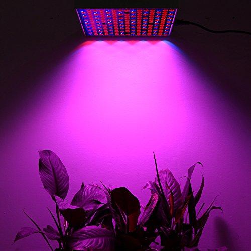 45W LED Grow Light UNIFUN New