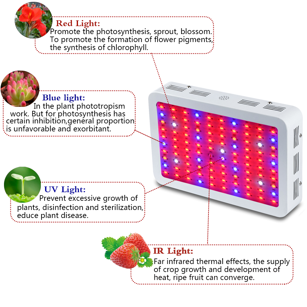 KING PLUS 1000W Led Grow Light-2