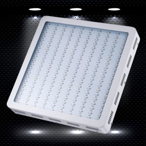 KING PLUS 1200W Led Grow Light
