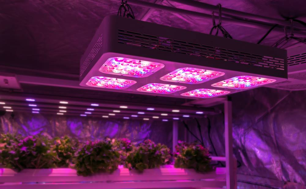 Mars Hydro 300w Led Grow Light Review Things You Should
