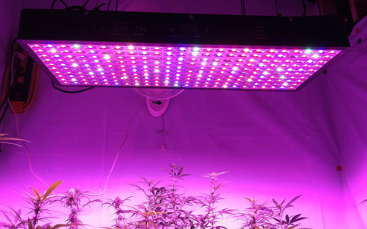 240-5W-led-grow-light