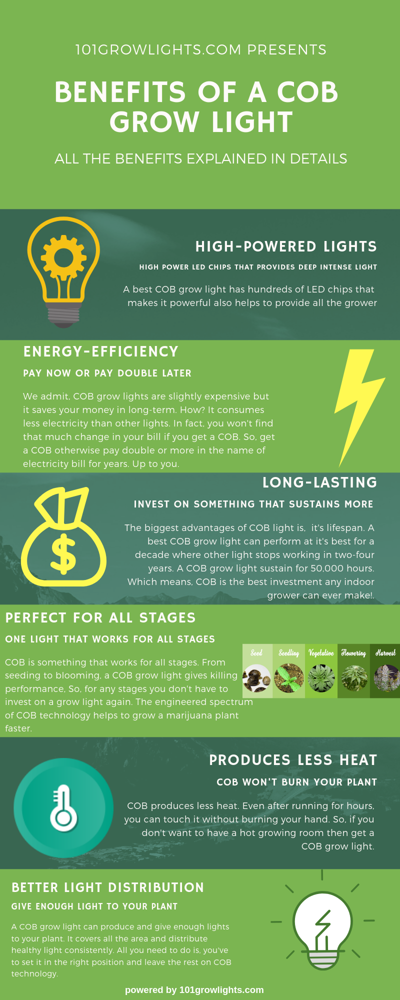 BENEFITS OF A COB GROW LIGHT Inforgraphic