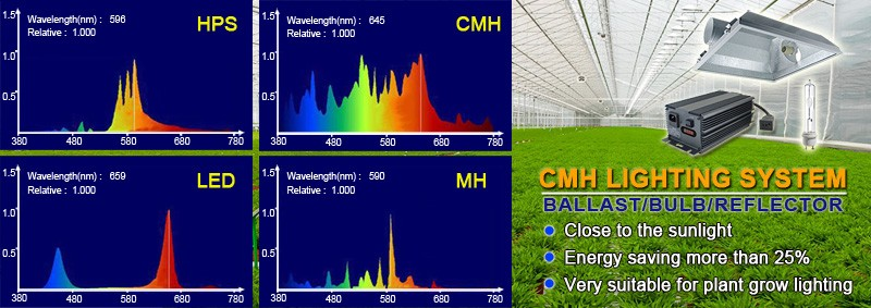 What is the CMH grow lights