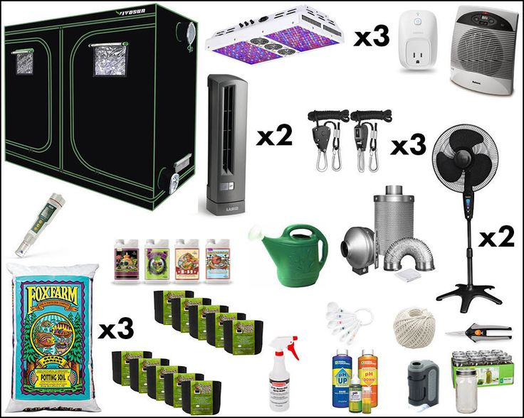 Kit Where You Ll Get Everything Need For Start Growing It S Time Savior And The Life Thing Your Plant A Will Save