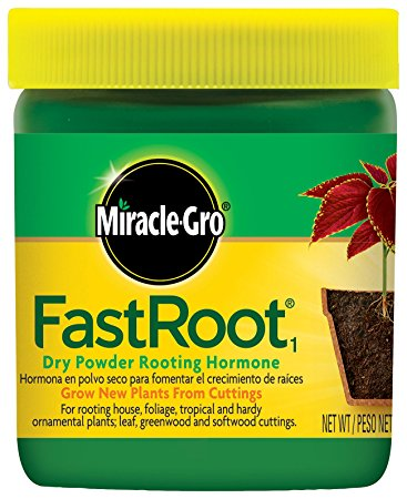 Miracle Grow FastRoot Dry Powder