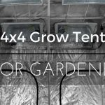 Top 6 Best 4×4 Grow Tent kits in 2018