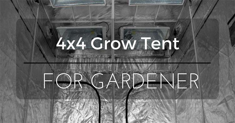 4x4-Grow-Tent