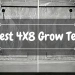 5+ Best 4×8 Grow Tents Reviews
