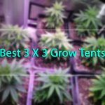 Best 3×3 Grow Tent Package In 2018 Reviews