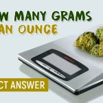 How Many Grams Are In An Ounce Of Weed? (Ultimate Guide)