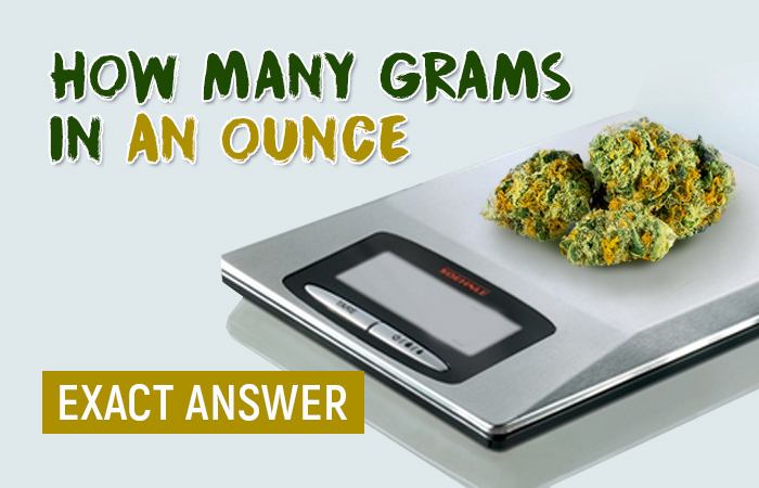 How Many Grams Are In An Ounce Of Weed
