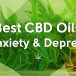 10 Best CBD Oil For Pain, Anxiety 2019 Reviews