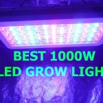 10 Best 1000 Watt Led Grow Lights For Grow Room Review