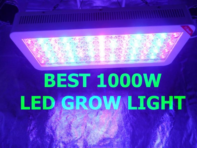 10 Best 1000W Led Grow Light 2019 For Grow Room Review