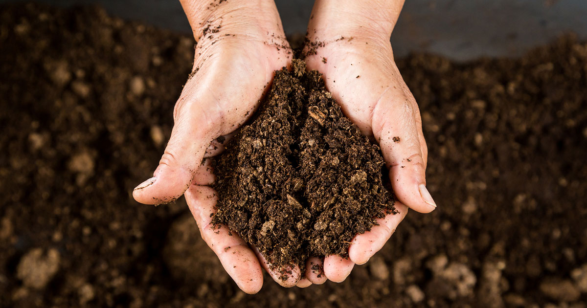 Testing_Soil_Composition