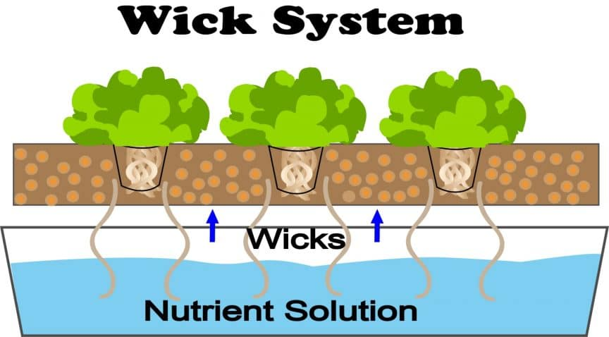 Wick-System-hydroponics