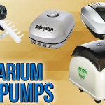 Best Air Pump and Water Pump for Hydroponics [2021 Version]