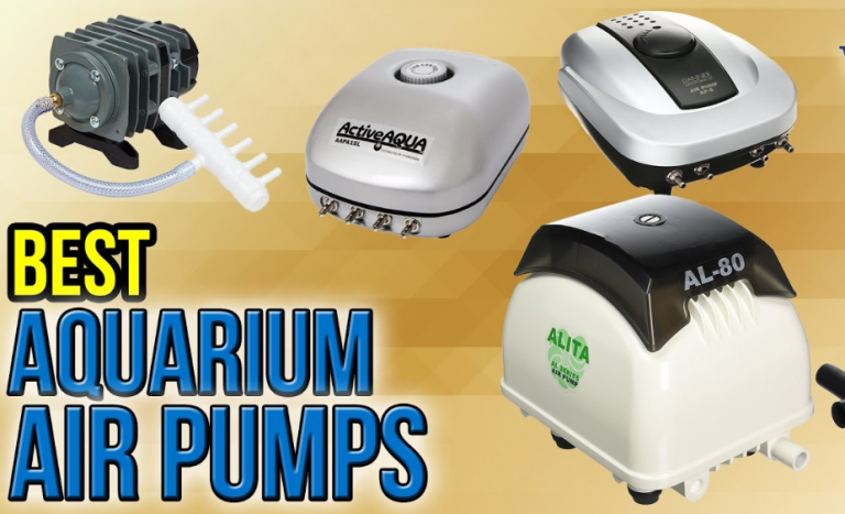 best-air-pump-hydroponic