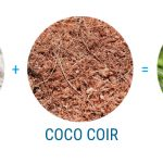 Best Coco Coir Hydroponics Nutrients for Grow Weed [2019 Reviews]