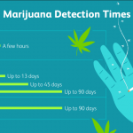 How Long Does Weed Stay In Your System? [Blood, Urine, Hair And Saliva]