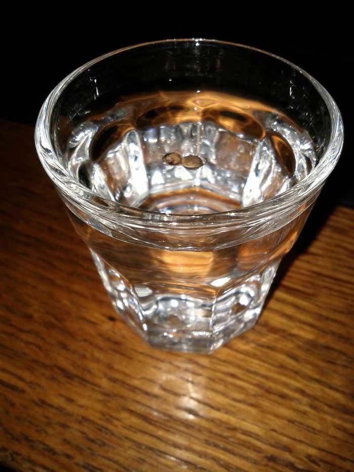 glass water method germination