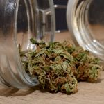 Storing Your Marijuana Buds | How To Store Weed For Extended Periods of Time