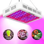 H&Grow 1000W Triple Chips  LED Grow Light Review