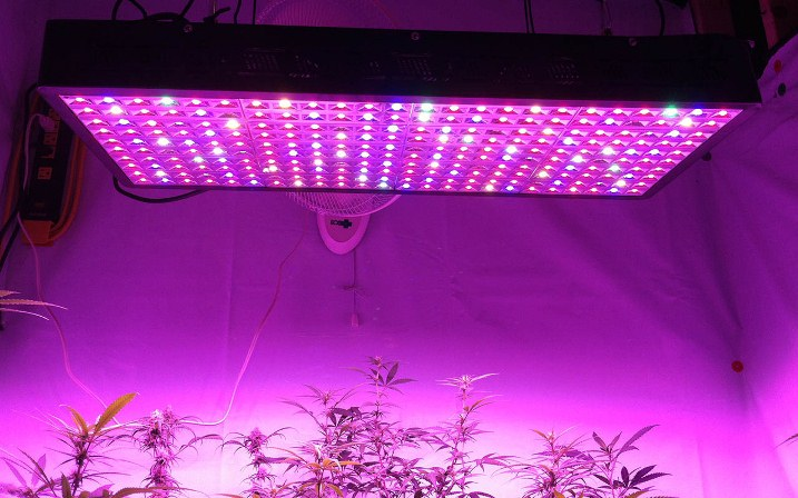 LED-grow-lights-300w