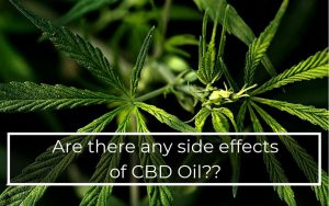 Are-there-any-side-effects-using-cbd-oil
