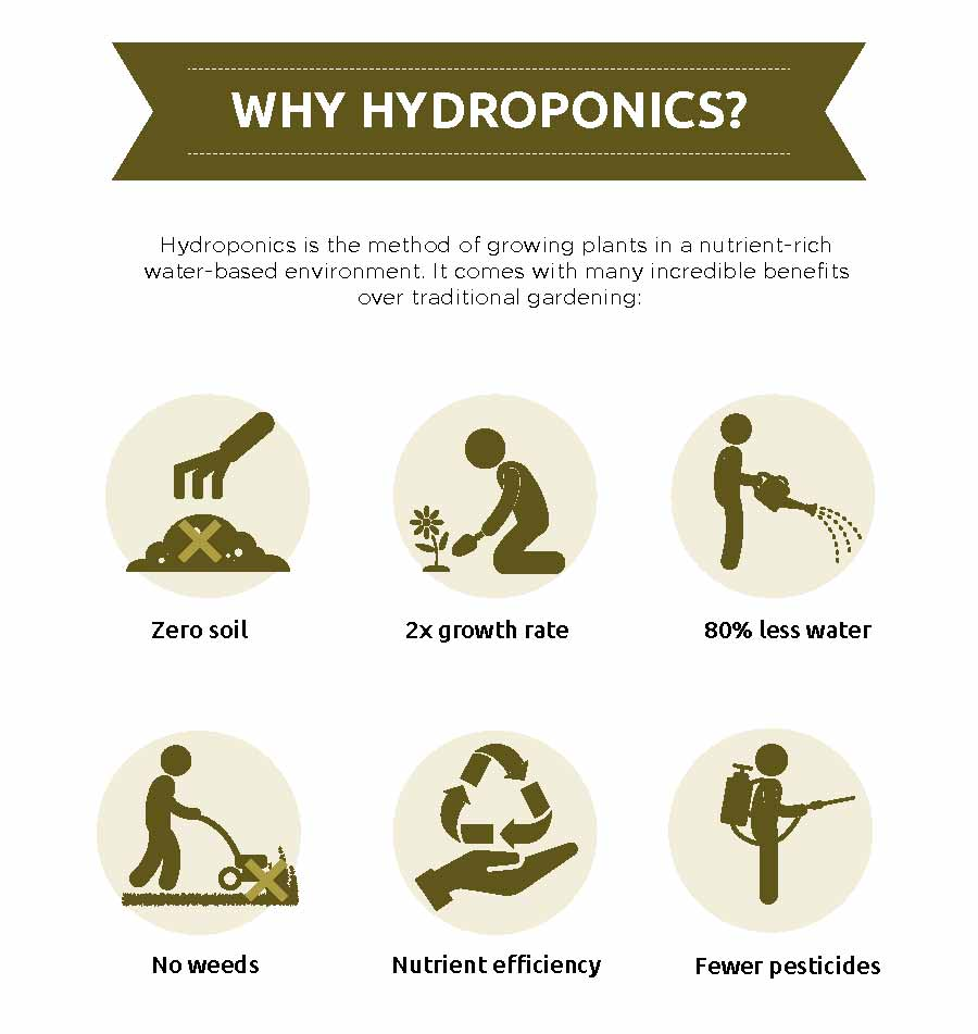 Benefits of Hydroponic Garden