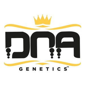 DNA Genetic Seeds