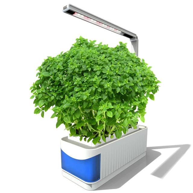 Hydroponic-Grow-Kit