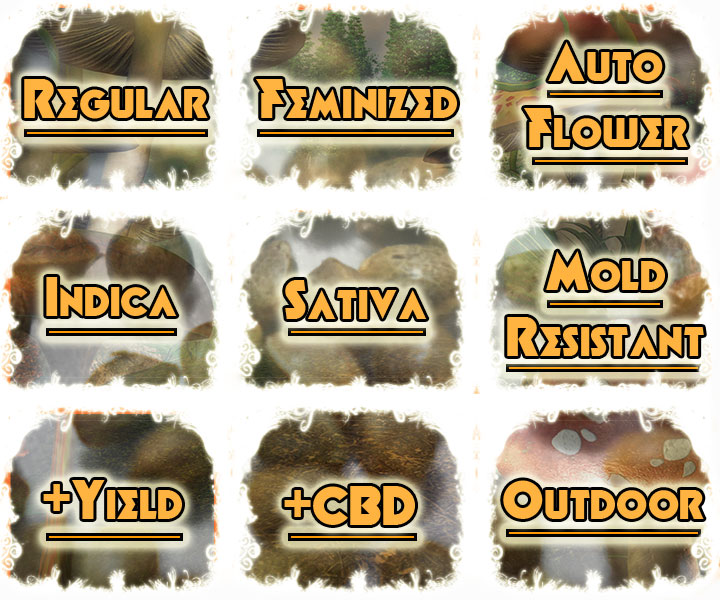 Select the seed strains