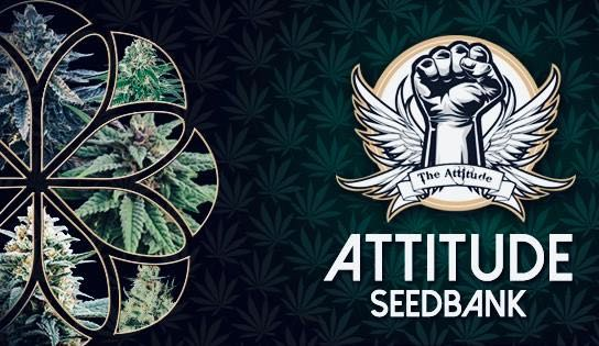 attitude-seed-bank-reviews
