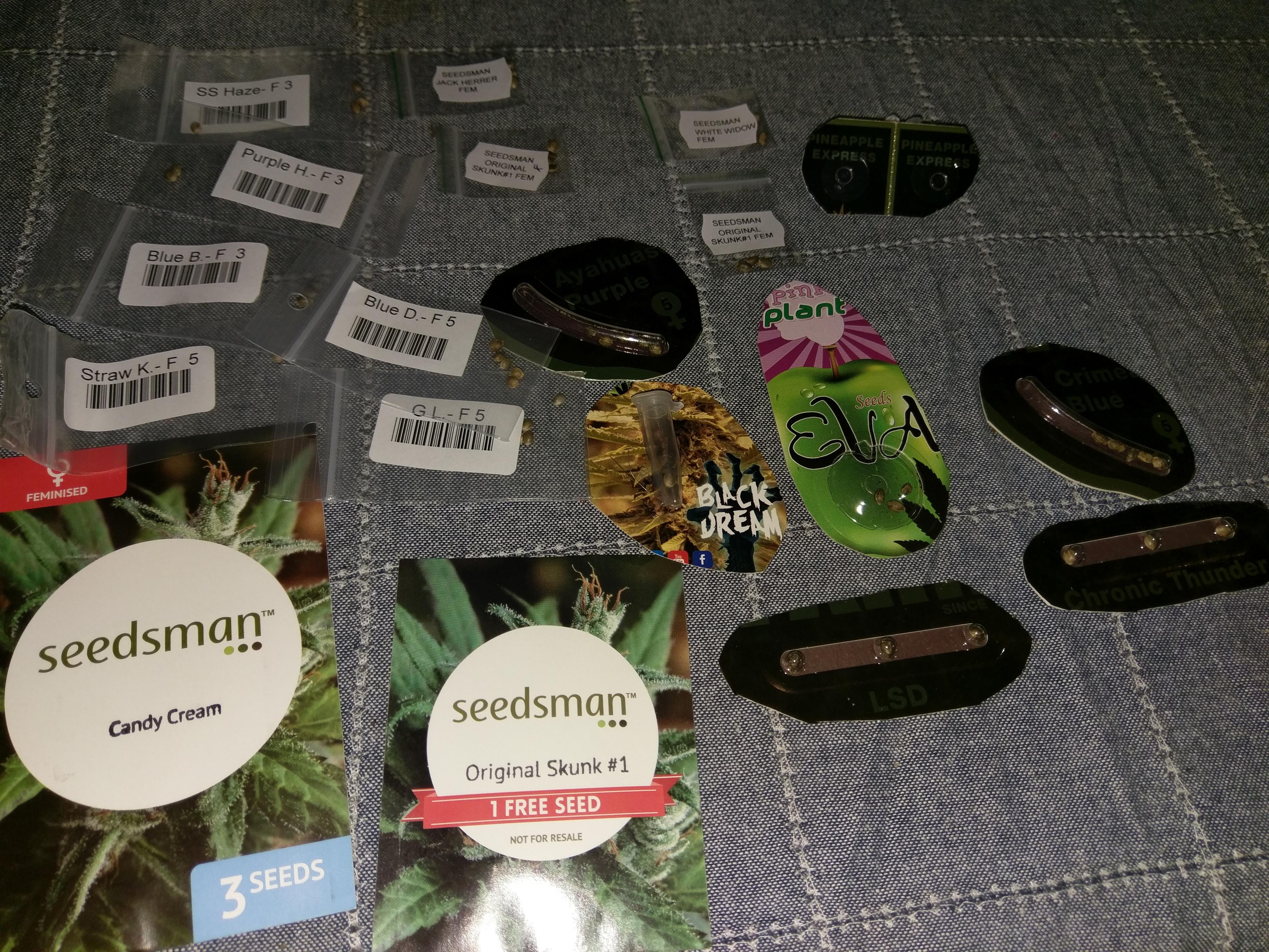 seedsman shipping