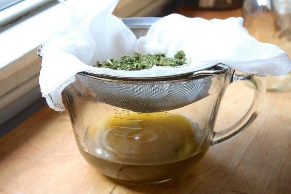 strain_cannabis