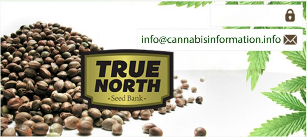 true north seed bank 2