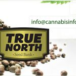 The True North Seed Bank (TNSB) 2019 Full Review