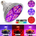 Best 100W Led Grow Lights Bulb Review