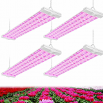 Best 4ft Grow Light System Review
