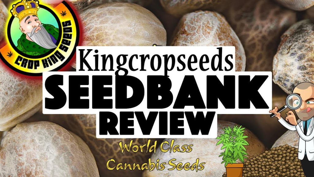 Crop King Seeds bank review