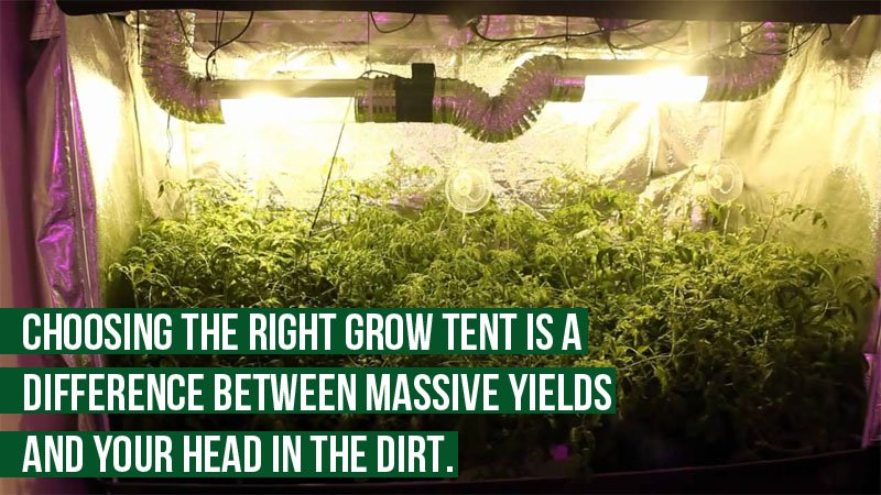 size of your grow tent