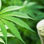 Benefits of Weed | Health Benefits of Medical Marijuana