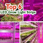 Best LED Strips Grow Light Review