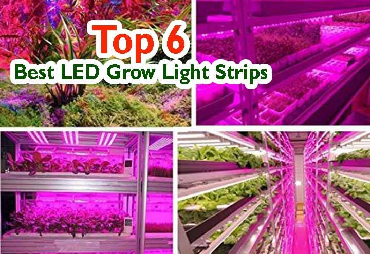 5 Best LED Grow Light Strips Review On 2020 1