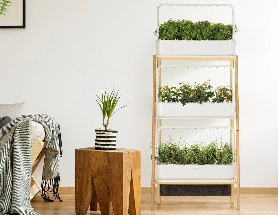 Click-and-Grow-Smart-Garden-27
