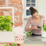 Click and Grow Smart Herb GardenReview